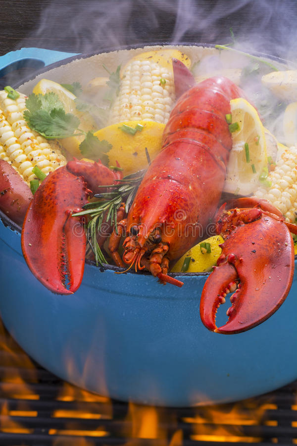 Steamed Lobster and Vegetables cooking over a barbecue grill. Steamed lobster and vegetables in a hot steaming pot on a barbecue grill royalty free stock image