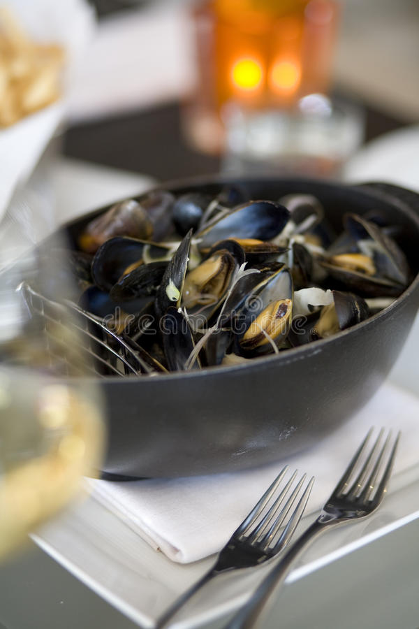 Free Steamed Mussells Royalty Free Stock Photo - 10285375