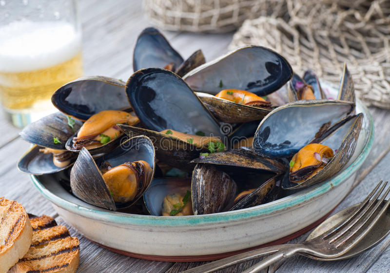 Steamed Mussels. A bowl of delicious steamed mussels with grilled bread and beer on a rustic tabletop with fish net stock images