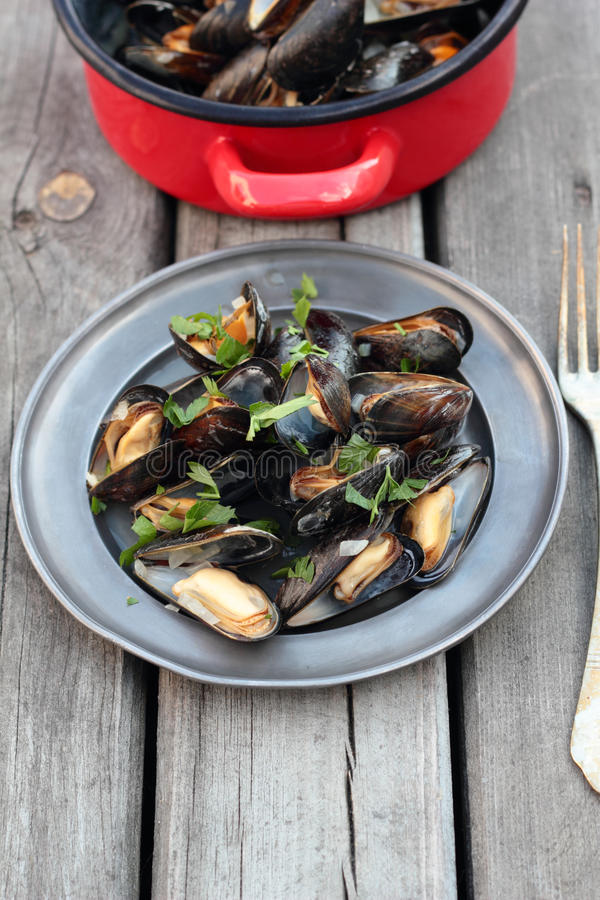 Steamed mussels. royalty free stock image