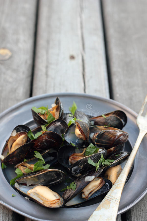 Steamed mussels. royalty free stock photos