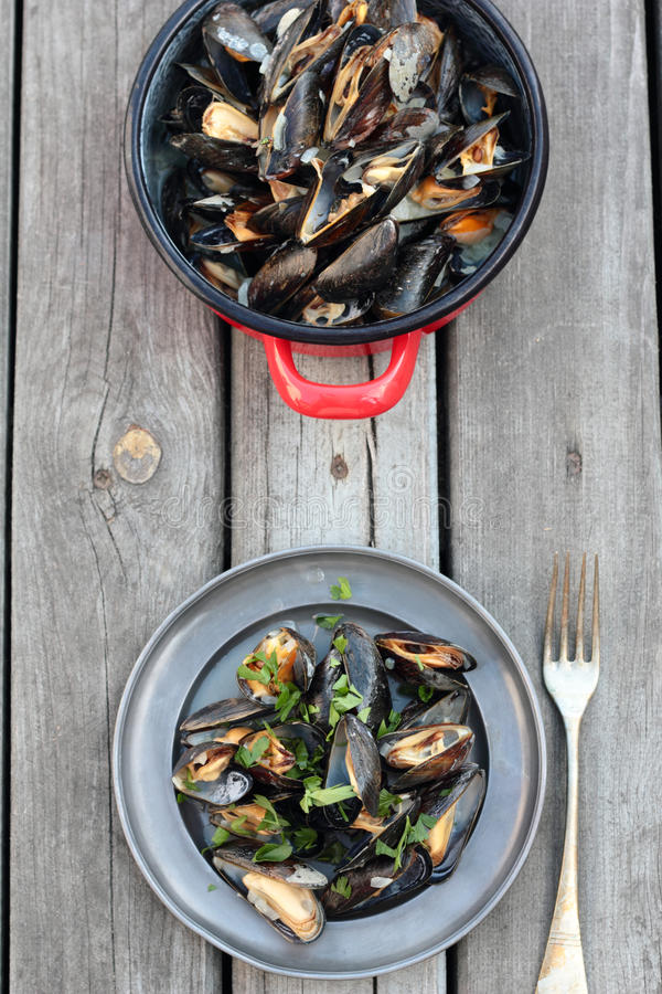 Steamed mussels. stock photo