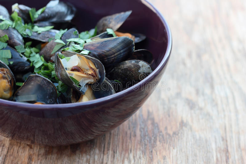 Steamed mussels. stock images