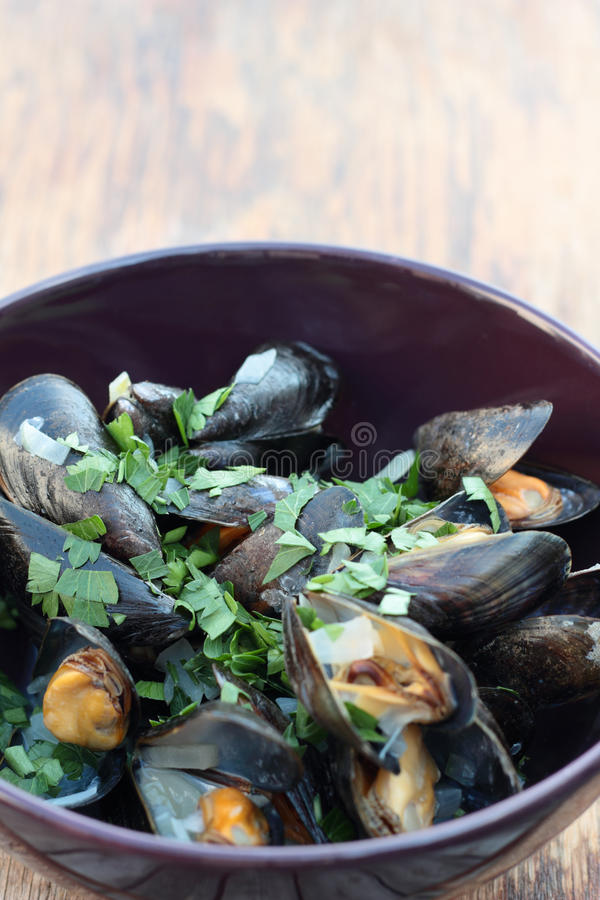 Steamed mussels. royalty free stock photo