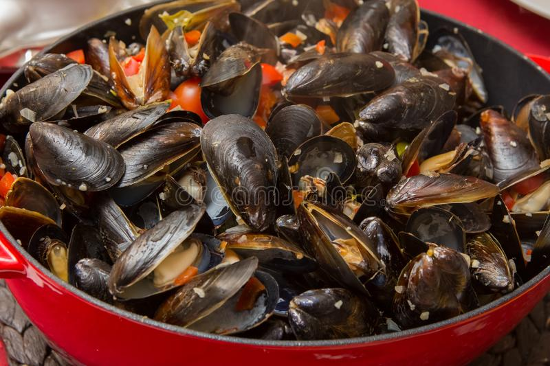 Steamed Mussels with White Wine and Garlic stock photography