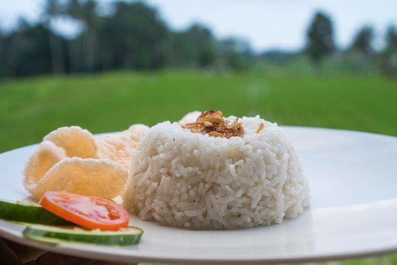 Steamed rice with prawn crackers and vegetables on white plate over blurred rice fields royalty free stock photography