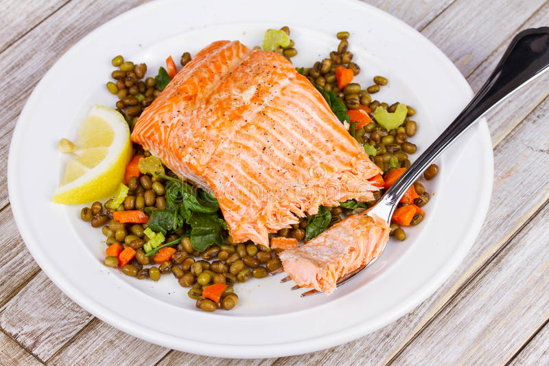 Steamed Salmon with Lentils and Arugula. royalty free stock images