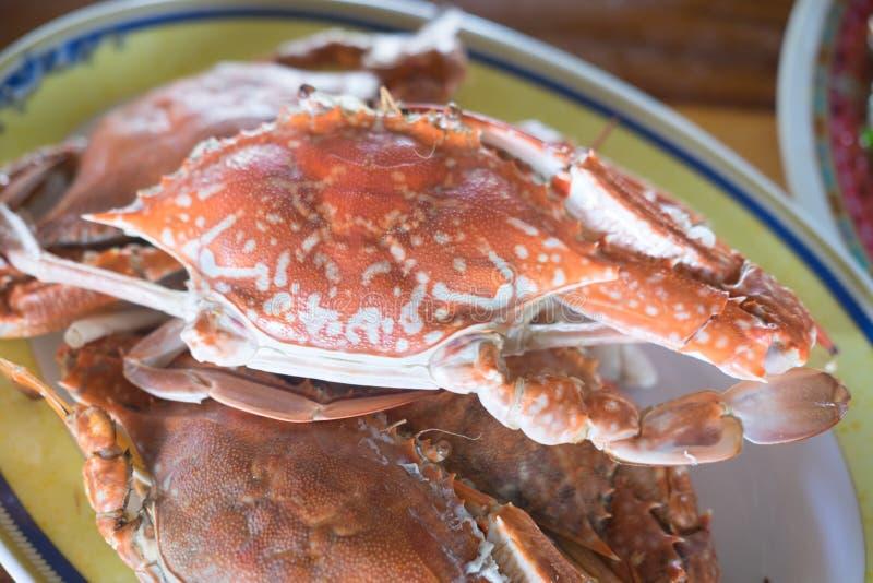 Steamed sea crab premium grade royalty free stock photos