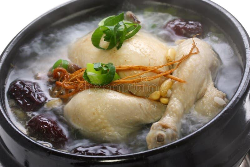 Steaming samgyetang royalty free stock image