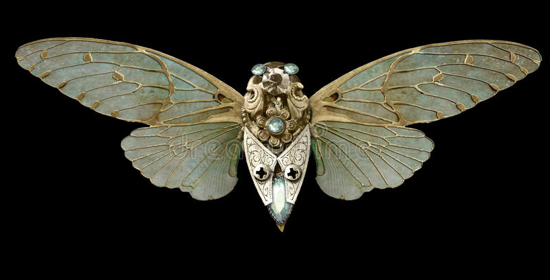 Download Steampunk Cicada stock image. Image of steampunk, jewels - 38850681