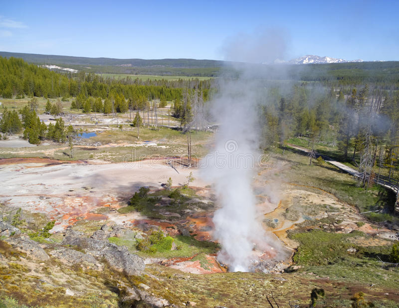 Steamscape. Geyser eruption in landscape variably covered by mineral deposits, rock, forest and mountains at Yellowstone National Park, USA royalty free stock image