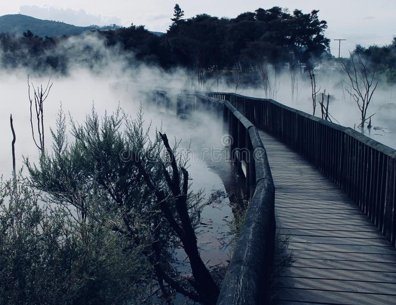 STEAMY HOT SPRING PARK PATH, ROTORUA NEW ZEALAND. Eerie B&W walkway through a park in downtown Rotorua New Zealand royalty free stock image