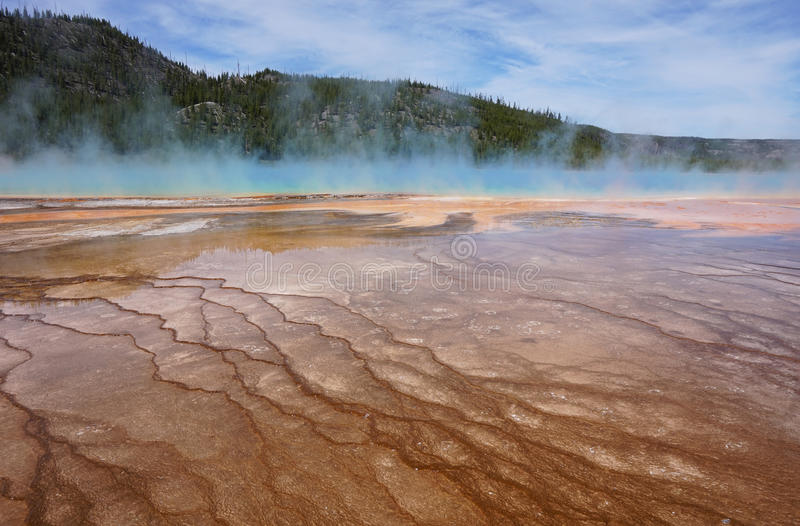 Steamy Spring. Steam vapor rising from the Grand Prismatic Spring in Yellowstone National Park which is the largest hot spring in the United States stock image