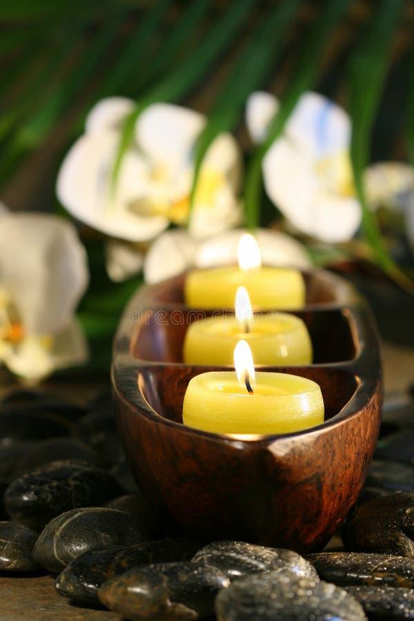 stearinljus blommapebbles som ställer in brunnsorten royaltyfria foton