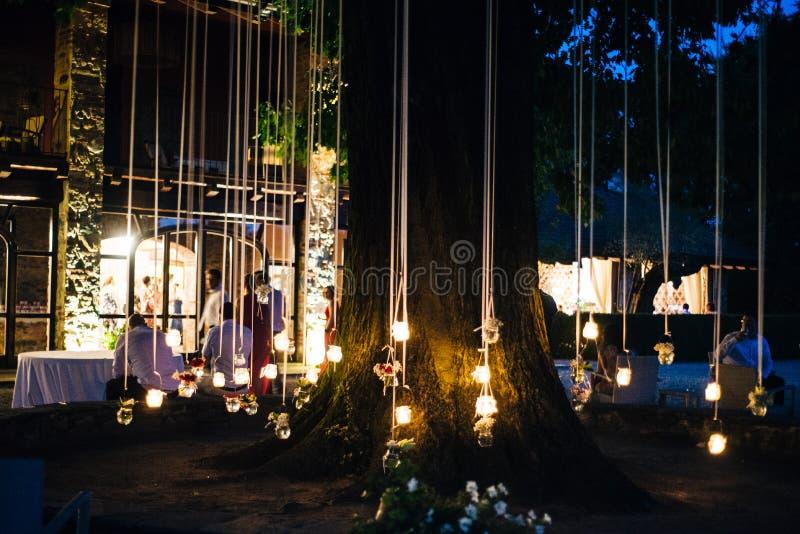 stearinljus som hänger från en ek, tänder upp trädgården på natten för medeltal fotografering för bildbyråer