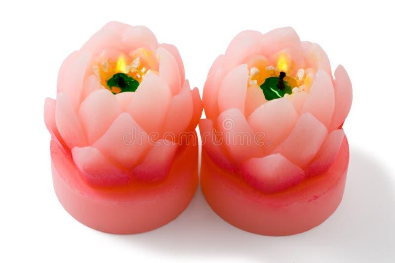 stearinljusclippingblomman isolerade lotusblommabanan fotografering för bildbyråer