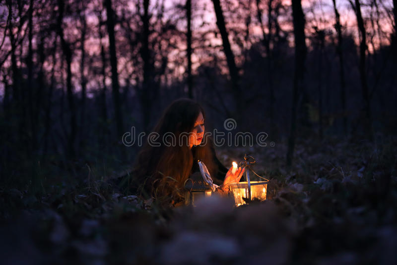 Stearinljusljus i skogen royaltyfria bilder