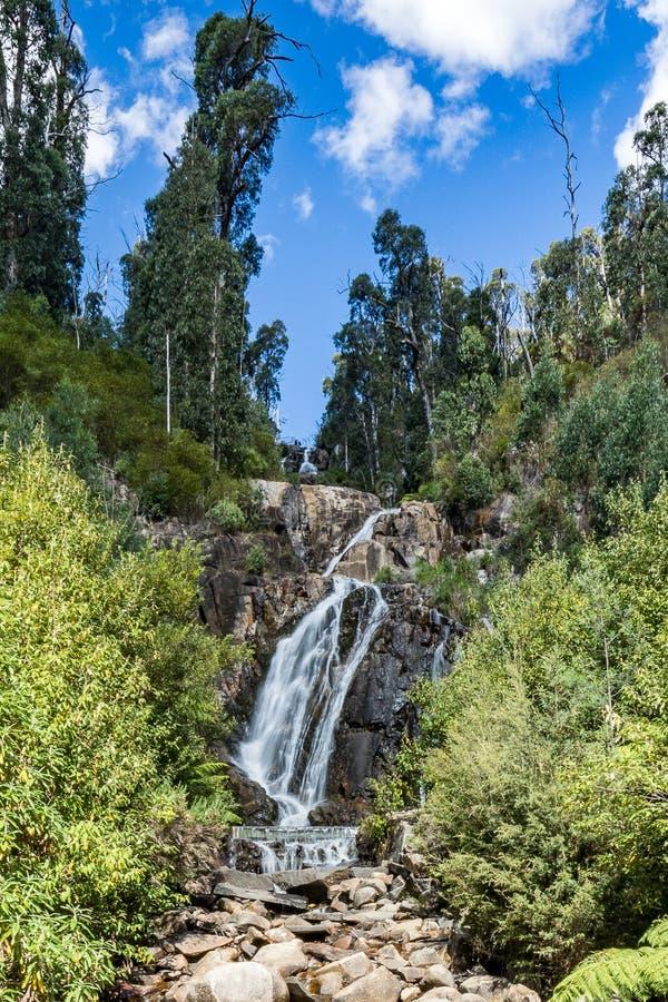 Steavenson nedgångar, Marysville, Victoria, Australien arkivfoton