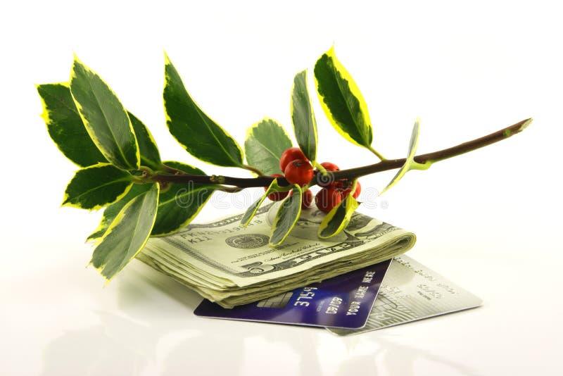 Stechpalme mit Geld und Kreditkarten stockfotografie