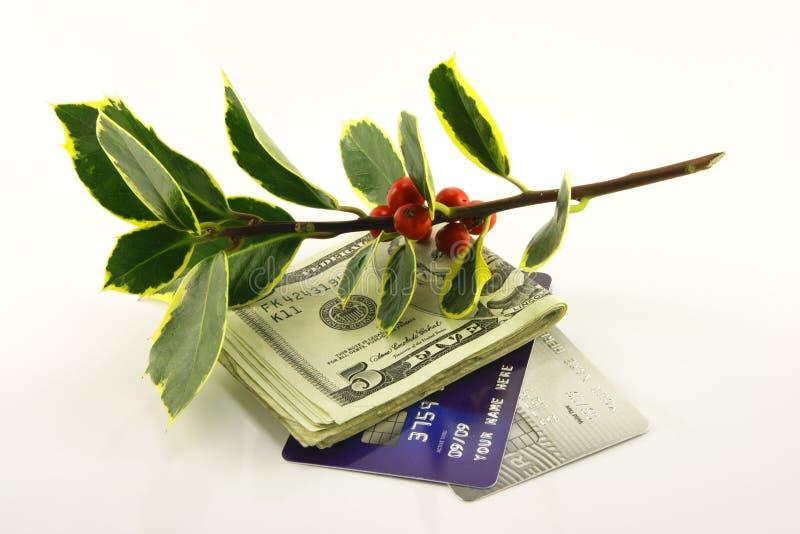 Stechpalme mit Geld und Kreditkarten stockbild