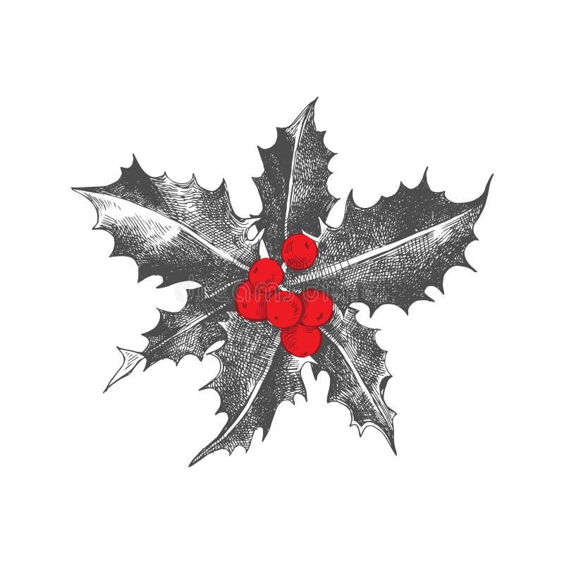 Stechpalmenbeere Weihnachtsikone lizenzfreie abbildung
