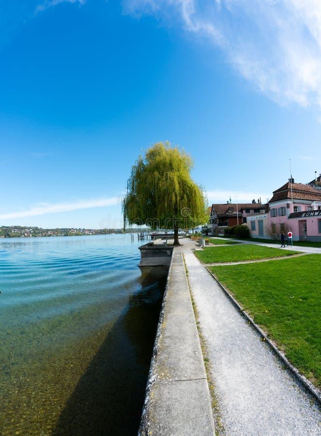 Steckborn TG/Schweiz - 22 April 2019: turister promenerar det idylliskt lakeshore i Steckborn på sjön Constance fotografering för bildbyråer