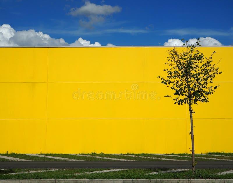 Stedelijke Achtergrond Blauwe hemel met wolken boven een heldere gele muur en één enkele boom stock afbeelding
