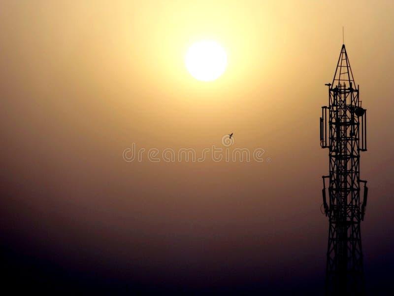 Stedelijke zon stock fotografie