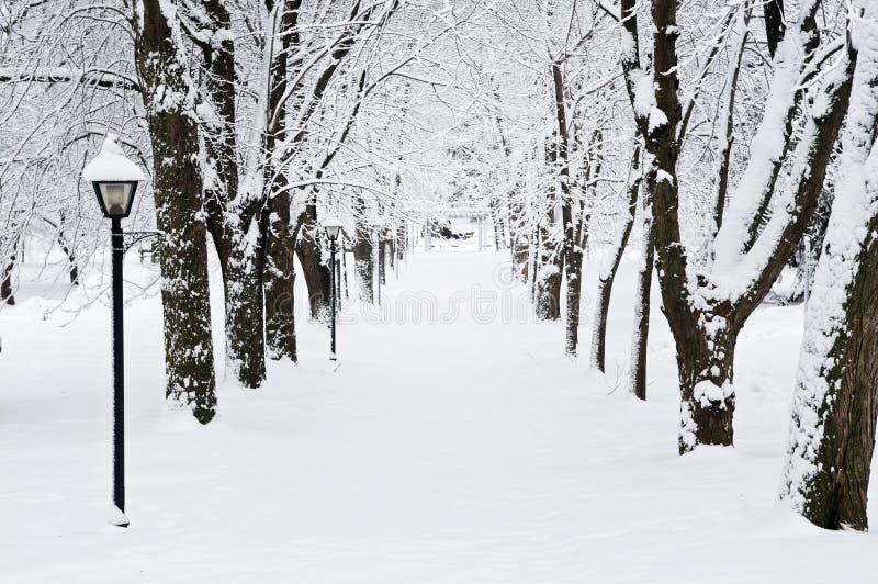 Steeg in de winterpark royalty-vrije stock fotografie