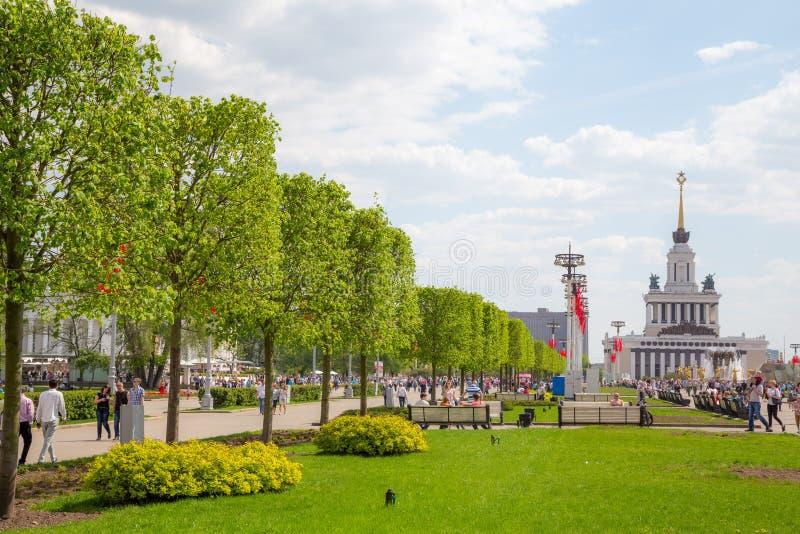 Steeg met lindebomen in VDNKh royalty-vrije stock foto's