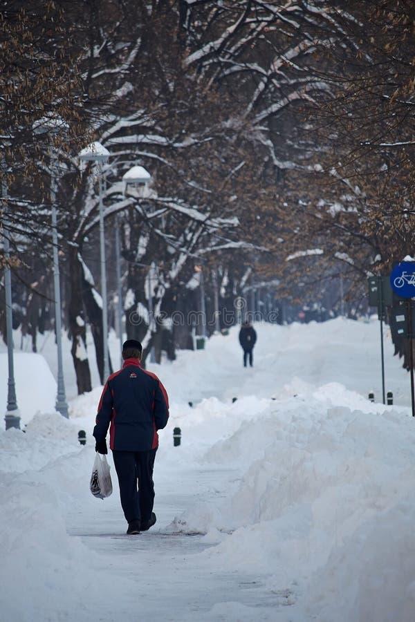 Steeg onder de sneeuw in de winter, Roemenië stock afbeeldingen