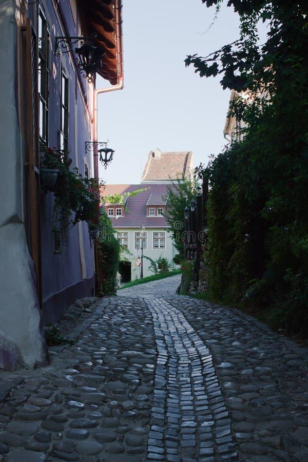 Steeg in Sighisoara Roemenië stock fotografie