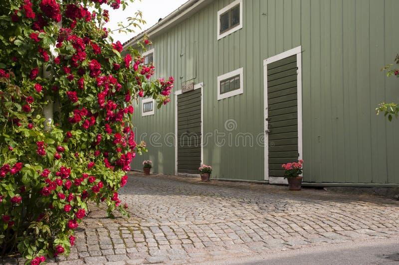 Steeg van bloemen stock foto's