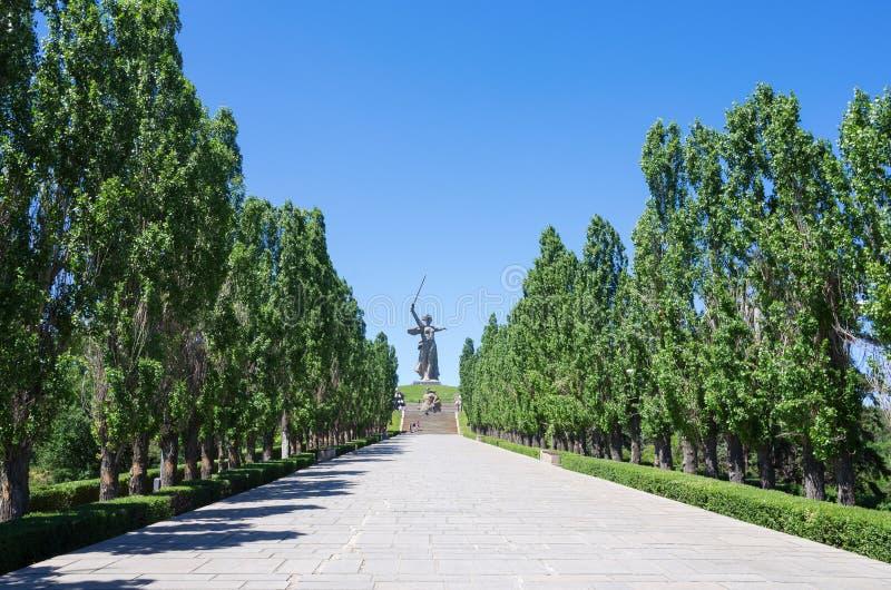 Steeg van Pyromidal-populieren en de Vraag van het monumenten` Vaderland! ` op de Mamayev-Heuvel stock afbeeldingen