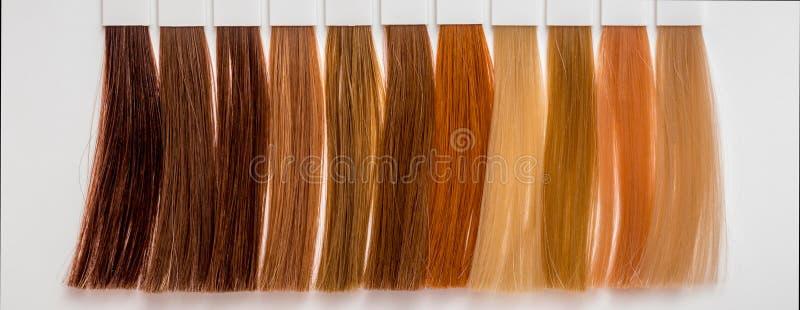 Steekproeven van haar van verschillende kleuren voor het verven in het kappen s royalty-vrije stock afbeelding