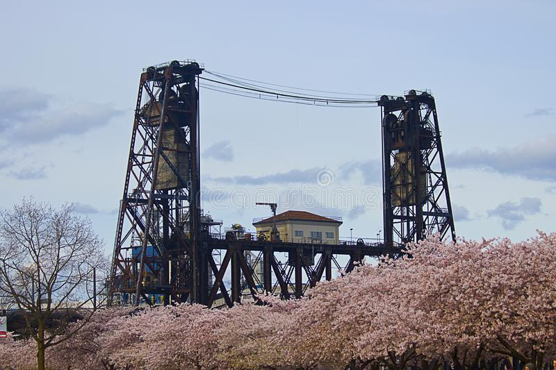 Steel bridge and cherry blossoms stock images