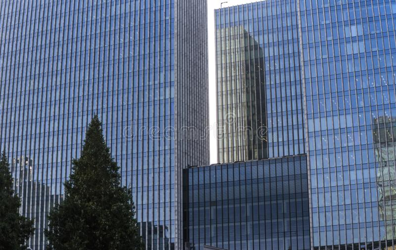 Steel glass building with tree. Glass skyscrapers give people a strong sense of oppression stock images