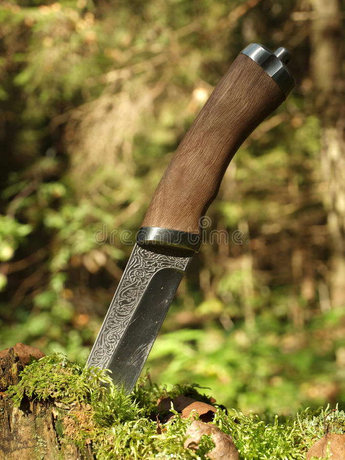 Steel Knife With Wooden Handle Royalty Free Stock Images