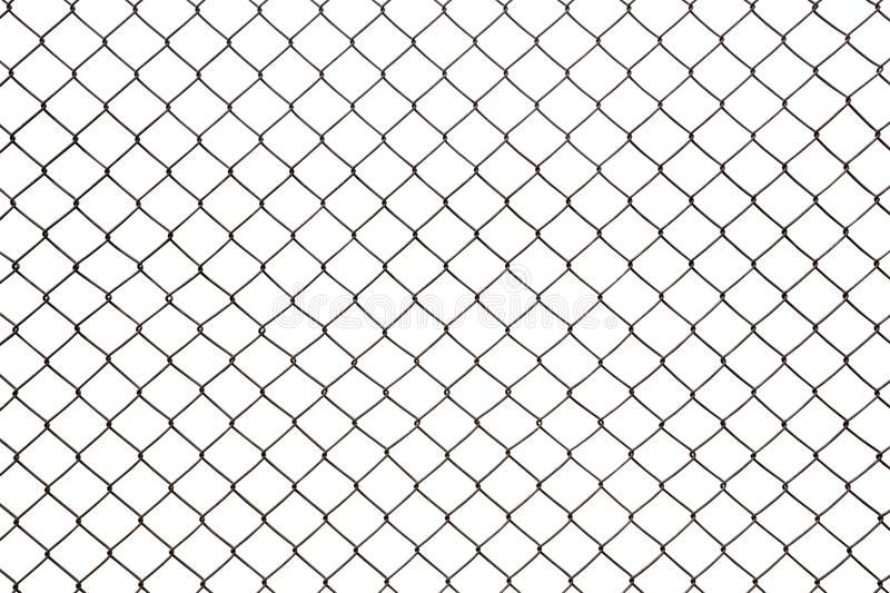 Steel mesh wire fence isolated. On white background stock images