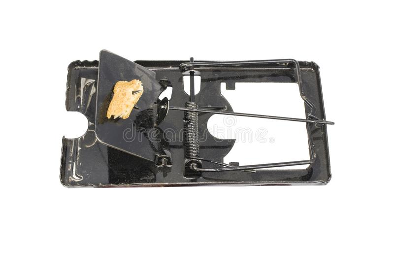 Steel mouse trap and bait, dirty mouse trap isolated on white background. High resolution image gallery stock photography