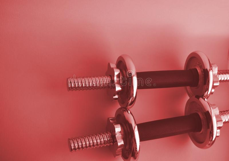 Steel 2 pink dumbbells with copy space. Sports equipment for bodybuilding. Fitness, sport concept royalty free stock photo
