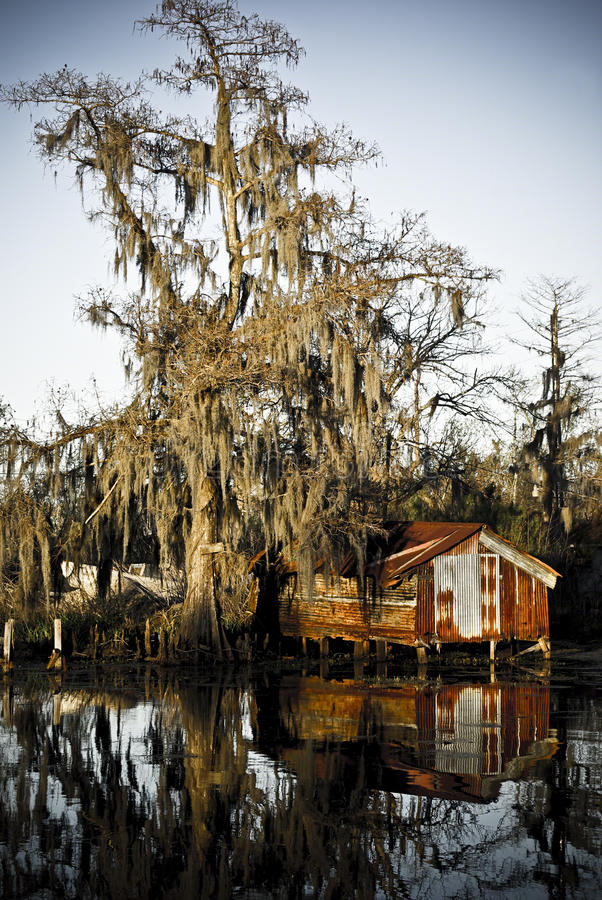 A steel shack reflected in the water of a swamp royalty free stock photos