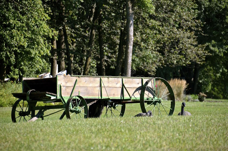 Steel wheeled old wagon. An old farm wagon for hauling and deliveries is being used as a lawn decoration along with two geese decoys stock image