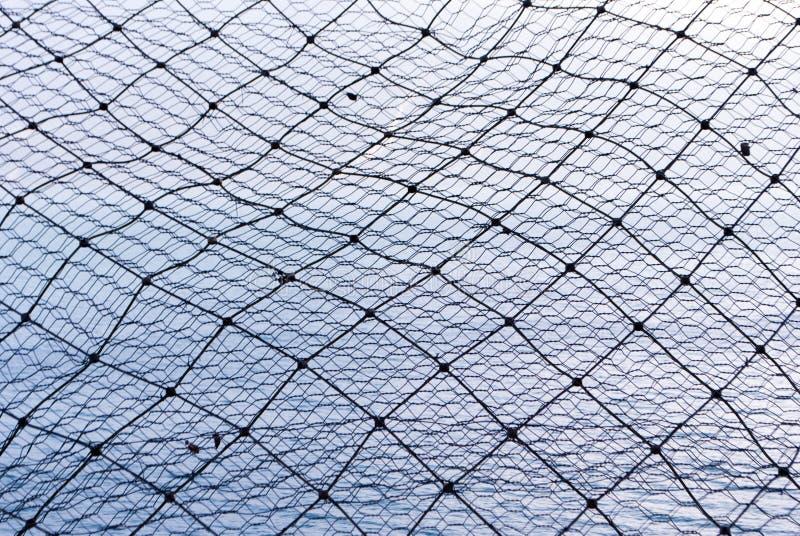 Download Steel wire stock photo. Image of metallic, industrial - 17587288