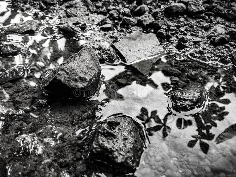Steen in de rivier stock afbeeldingen