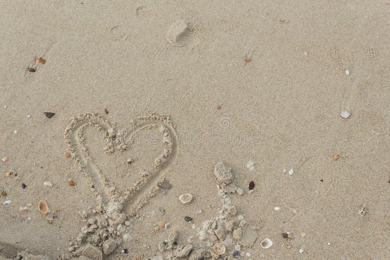 Steen, Shells in het zand op het strand in de zomer stock foto