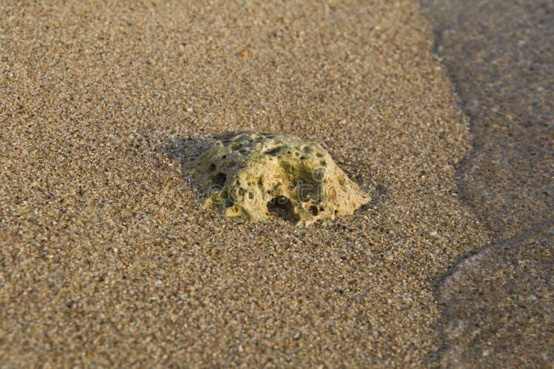 Steenabstractie in het zand op de kust stock fotografie