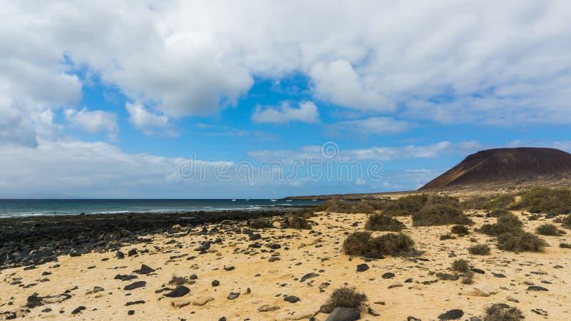 Steenachtig strand met amarilla van Montana stock afbeeldingen