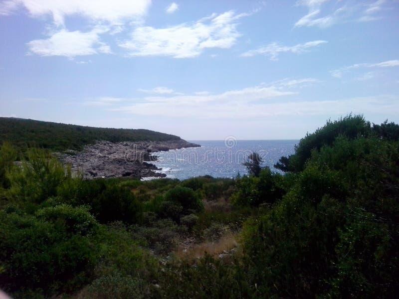 Steenachtige kust van het overzees stock foto