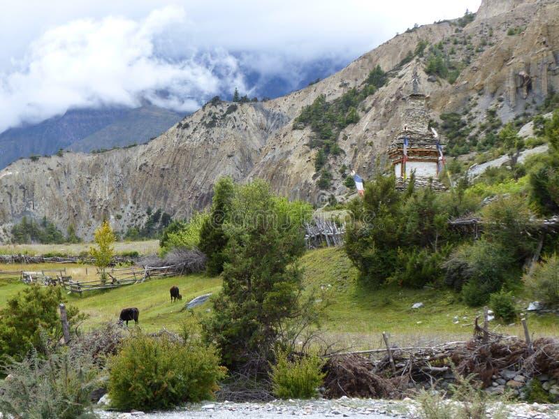 Steenachtige Stupa tussen weiden stock foto's